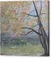 Morning Solitude Canvas Print