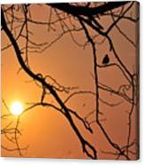 Morning Sunrise Canvas Print