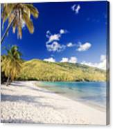 Morning Sunshine In Magens Bay Canvas Print