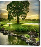Morning Tree Canvas Print