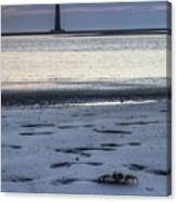 Morris Island Lighthouse And Crab Canvas Print