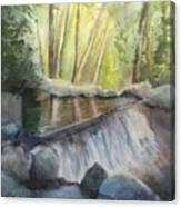 Mosquito Creek 3 Canvas Print