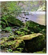 Moss Covered Boulders Canvas Print