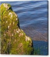 Moss Covered Rock And Ripples On The Water Canvas Print
