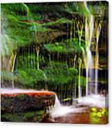 Moss Falls - 2981-2 Canvas Print
