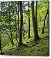 Moss Forest - Ginkakuji Temple - Japan Canvas Print