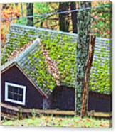 Moss Roof Canvas Print