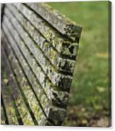 Mossy Bench Canvas Print