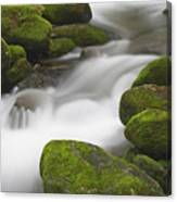 Mossy Boulders Canvas Print