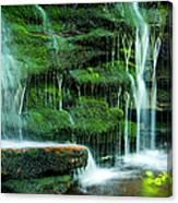Mossy Falls - 2981 Canvas Print