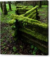 Mossy Fence 5 Canvas Print