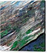 Mossy Rock Canvas Print