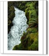 Mossy Rocks And Stream Poster Canvas Print