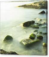 Mossy Rocks On Shoreline Canvas Print