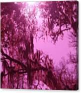 Mossy Splendor Canvas Print