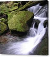 Mossy Waterfall Landscape Canvas Print