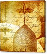 Moths And Mosques Canvas Print