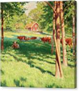 Motif From Skedevid In Tjarstad Canvas Print