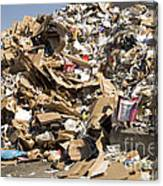 Mound Of Recyclables Canvas Print