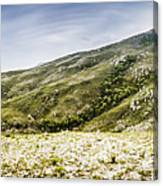Mount Agnew Landscape In Tasmania Canvas Print