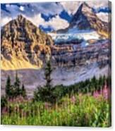 Mount Assiniboine Canvas Print