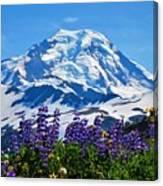 Mount Baker Wildflowers Canvas Print