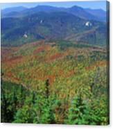 Mount Chocorua Foliage Canvas Print