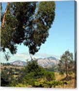 Mount Diablo Canvas Print