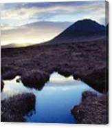 Mount Errigal, County Donegal, Ireland Canvas Print