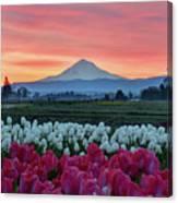 Mount Hood Sunrise Canvas Print