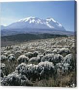 Mount Kilimanjaro, The Breach Wall Canvas Print