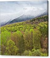 Mount Mansfield Spring Snow Canvas Print