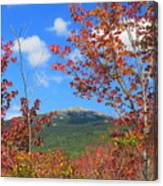 Mount Monadnock Red Maple Foliage Canvas Print