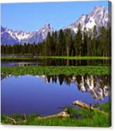 Mount Moran Tetons Nat'l Park Canvas Print