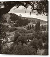 Mount Of Olives Canvas Print
