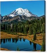 Natures Reflection - Mount Rainier Canvas Print