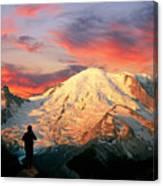 July In Washington, Mount Rainier National Park Canvas Print