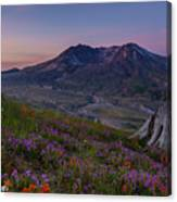 Mount St Helens Spring Colors Canvas Print