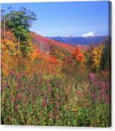 Mount Washingon Flowers Foliage Canvas Print