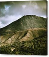 Mount Zeehan Tasmania Canvas Print