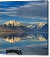 Mountain And Driftwood Reflections Canvas Print