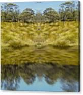Mountain Button Grass Canvas Print