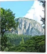 Mountain Charm Canvas Print