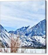 Mountain Cool Canvas Print