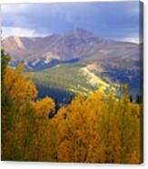 Mountain Fall Canvas Print