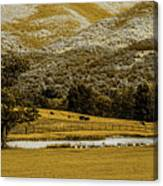 Mountain Farm With Pond In Artistic Version Canvas Print