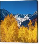 Mountain Gold Canvas Print