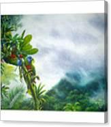 Mountain High - St. Lucia Parrots Canvas Print