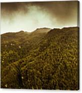 Mountain Of Trees Canvas Print