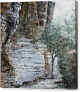 Mountain Pass Canvas Print